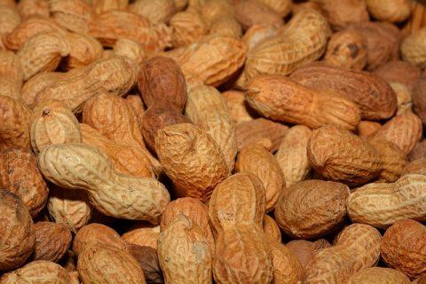 peanuts-618547_640